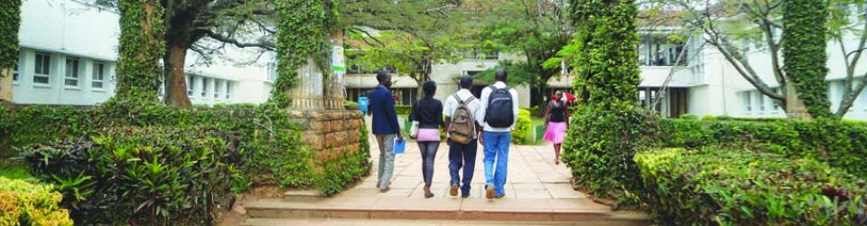 The second phase of the African Potential Project will support the next-generation of researchers like junior staff or PosDocs to do research in collaboration with Japanese next-generation researchers