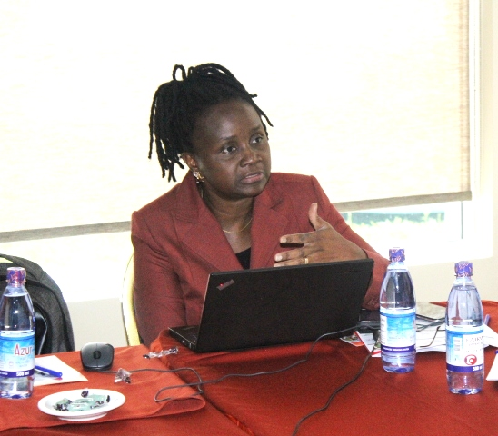 Ms. Anette Mpabulungi- Wakabi, Team Leader of the Rule of Law and Constitutional Democracy project at UNDP